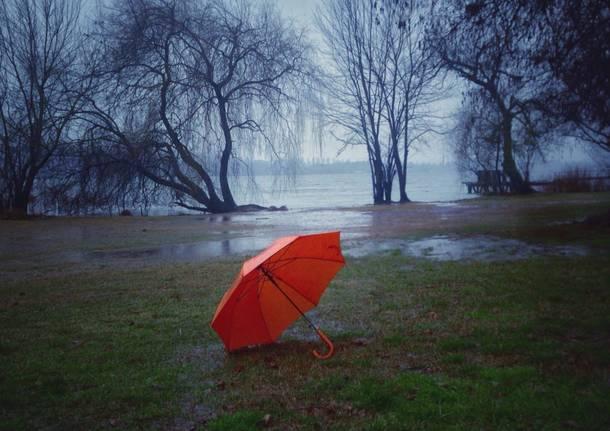 Pioggia come tempo e goccia mille versi arsi sparsi - Rima con finestra ...